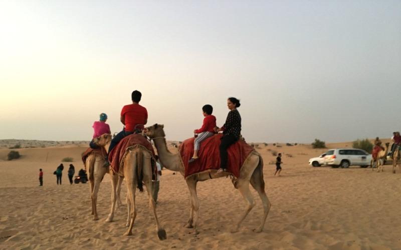 Best kenya safari tours at Desert safari dubai