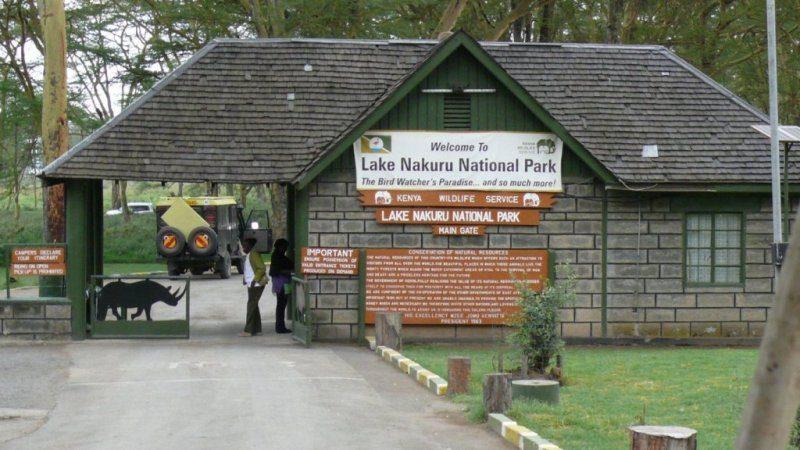 Safari tours at Lake Nakuru park