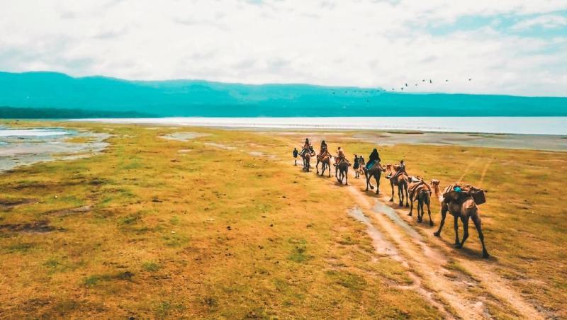 Safari tours at Mbweha Camp