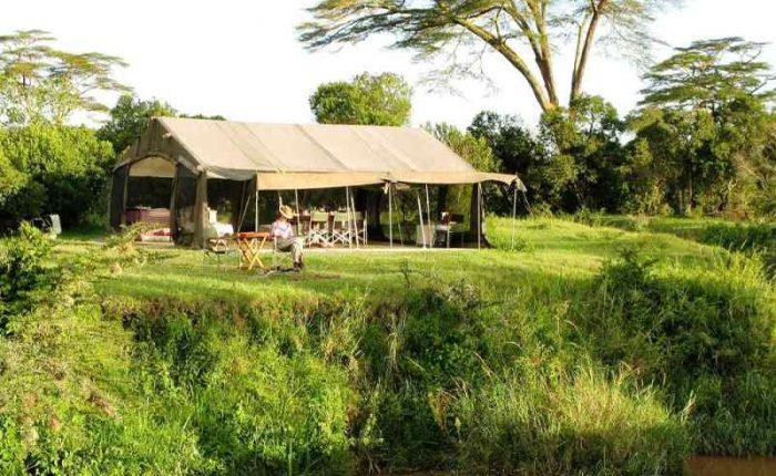 safari tours at Ol pejeta