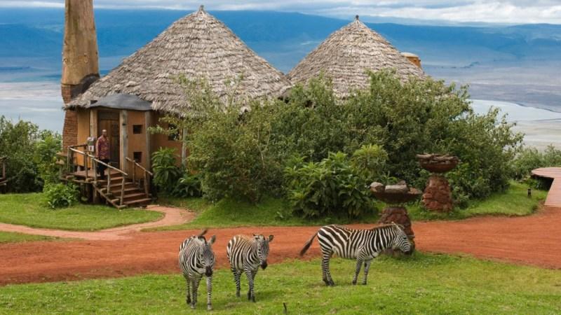 Safari tours at lake magadi kenya